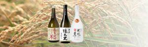 熊本県|人吉市|大和一酒造元|球磨焼酎|米焼酎|焼酎|温泉焼酎|夢|玄米焼酎|牛乳焼酎|隠礼里|牧場の夢|稲穂