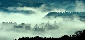 熊本|人吉|球磨焼酎|大和一酒造元|玄米焼酎|米焼酎|霧|人吉盆地|