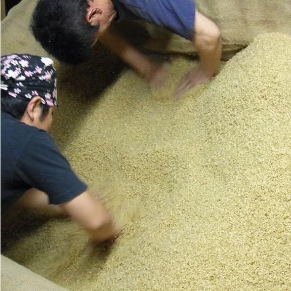玄米|焼酎|玄米焼酎|球磨焼酎|床もみ|