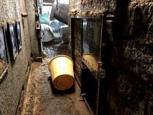 麹室|球磨焼酎|豪雨災害